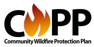 CWPP logo